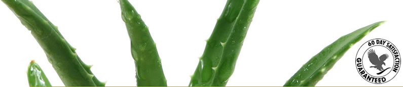 Aloe Vera - product trials